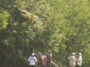 2007.08.19 - Flugtag - Baumlandung