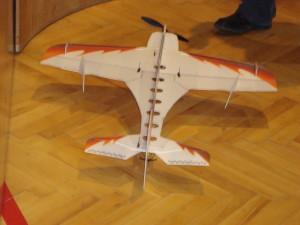 6.3.2010 Hallenfliegen in Breitenfurt - Shocky