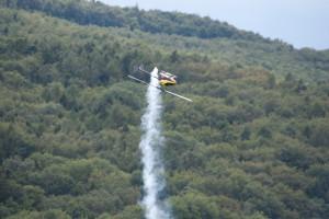 "15.8.2011 50 Jahre MFK-B - Flugshow - ""TREX 700"", 15ccm, Rotor DM 160cm"