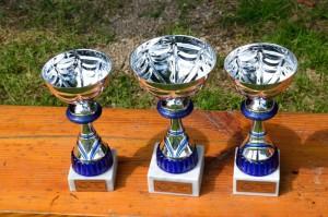 Ziellanden, Die Pokale